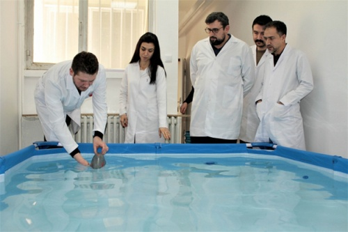 Robot balık su altını keşfedecek