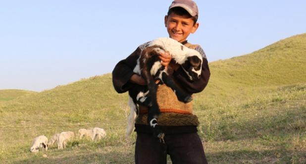 Göçebe hayvancılar için küresel girişim