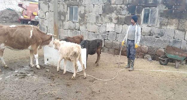 Çiftçi haciz kıskacında, köylünün hayvanları haczedildi