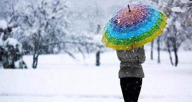 Yılın ilk kar yağışı başladı