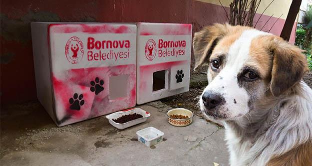 Bornova Belediyesi candostların yanında