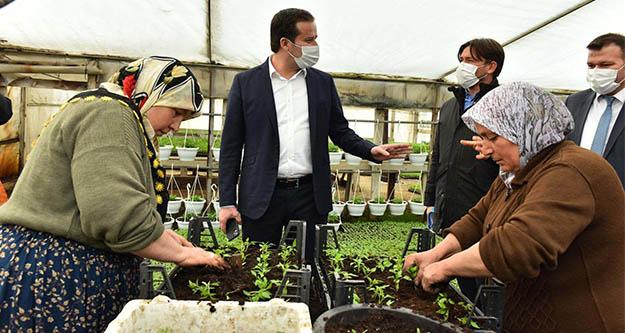22 Başkentli çiçekli ANFA ile sözleşme imzaladı