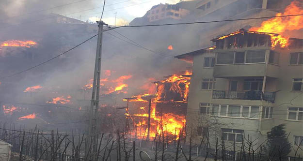 Artvin'de büyük yangın! 50'ye yakın ev alev aldı