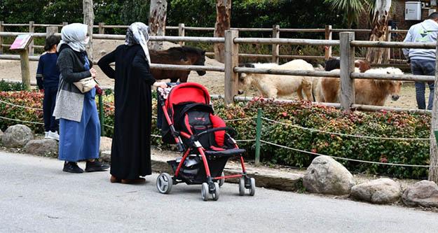 İzmirliler pandeminin stresini  Doğal Yaşam Parkı'nda atıyor