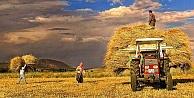 Tarım sektörüne destek