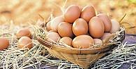 Yumurta satışında yeni dönem