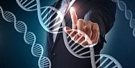 Genetik kodlarınıza göre beslenin