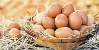 Yumurtaya 1 yılda yüzde yüz zam