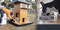 Mersin Büyükşehir Belediyesi sahilde farklı noktalara kedi evi yerleştirdi