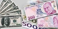 Yurt içi yerleşiklerin döviz mevduatı 230,3 milyar dolar