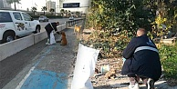 İzmir'de sokak hayvanları unutulmadı