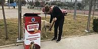 Menderes'te sokak hayvanları için yeni uygulama