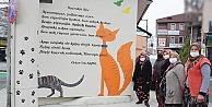 Ciğercinin kedisi ile Sokak kedisi duvar resmi oldu